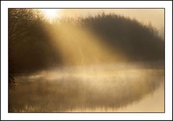 Natures Spotlight - Free image #299077