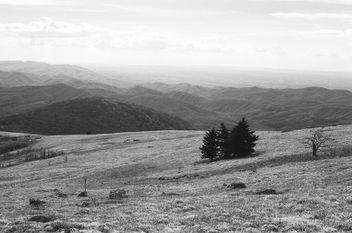 Whitetop (film) - Free image #299147