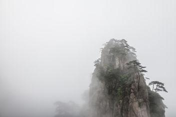 Fog - Free image #299157