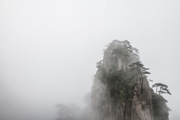 Fog - image gratuit #299157