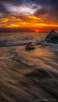 My Florida - image gratuit #299567