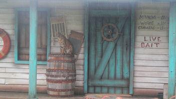 Rain,Rain Go Away!! - бесплатный image #300197