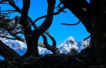 Andes and Tierra del Fuego - Free image #300757