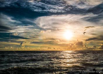 My Florida - Free image #300947