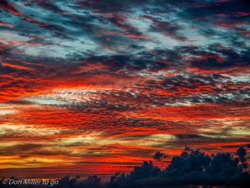 Firey Florida - Free image #300987