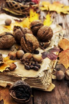 Close-up of walnuts, leaves and hazelnuts on old book - бесплатный image #302007