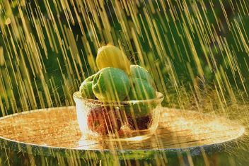 Fruits and summer rain - image #303337 gratis