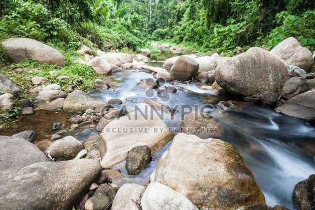 Rivière de montagne - image gratuit #303747
