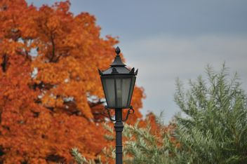 Lantern on a background of yellow foliage - бесплатный image #303807