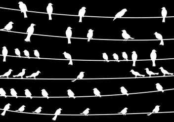 Bird On Wire Vector - Free vector #304967