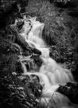 Mountain stream - Free image #305287