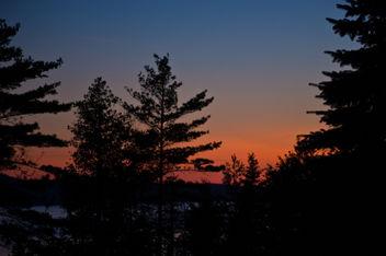 Northern Michigan deep woods sunset - Free image #308187