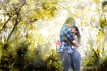 Love - Free image #309027
