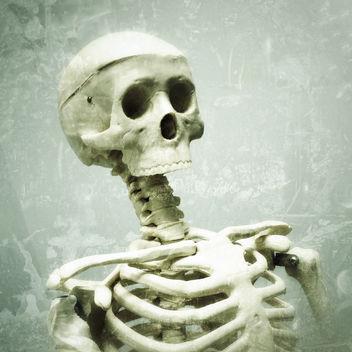 bones - бесплатный image #309397