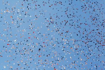 Confetti Against a Blue Sky - бесплатный image #310097