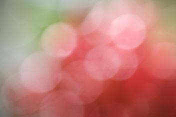 Berry-keh ~ free texture - Kostenloses image #313677