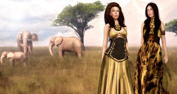 Walk On The Wild Side - бесплатный image #315937