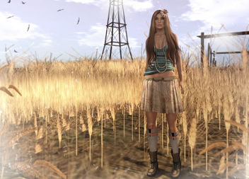 Lost To The Wind - image gratuit(e) #316267
