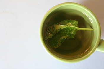real mint tea - Free image #317197