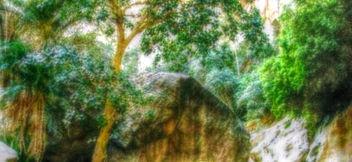 Natures tones - Free image #319047