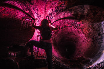 Fuchsia Glow - Free image #319727