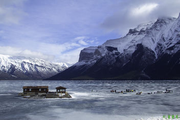 Ice Life - Kostenloses image #320617