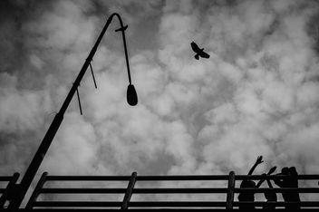 Let's fly - бесплатный image #321397