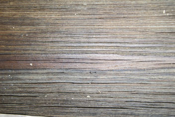 Free Wood Textures - Free image #321837