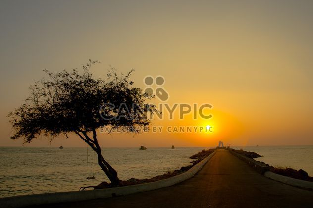 Romantic road on the beach - Free image #326537
