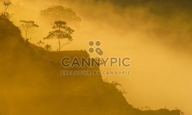 Morning mists - Free image #328097
