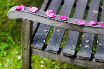 Rose petals on a bench - image #328447 gratis