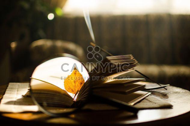 Желтые осенние листья через увеличительное стекло и палочки благовоний и книги - бесплатный image #330397