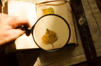 Autumn yellow leaves through a magnifying glass and incense sticks and book - бесплатный image #330417