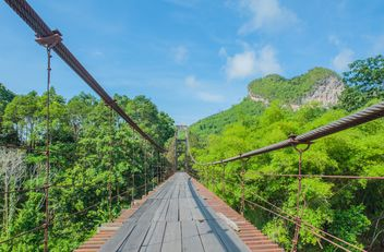 pedestrian bridge in forest - Free image #330997