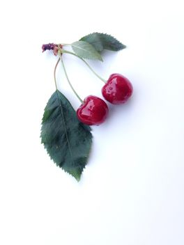 Twin Cherries - image gratuit #332817