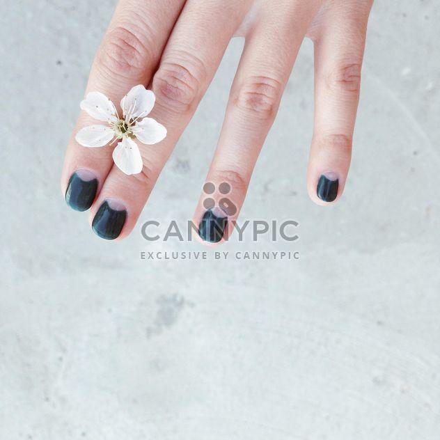 Рука и Вишневый цветок - бесплатный image #337917