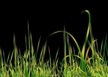 Grass black - vector gratuit #338907