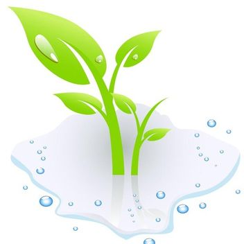 Plant with water - Free vector #339017