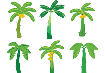 Banana Tree Vector - vector gratuit #339357