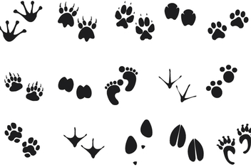Human Animal Footprints - Free vector #340977