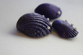 Violet shells on white background - image gratuit(e) #341467