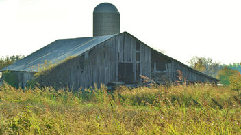 Old Barn Left For Nature - image gratuit(e) #341857