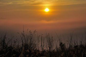 Sunrise - Free image #343897