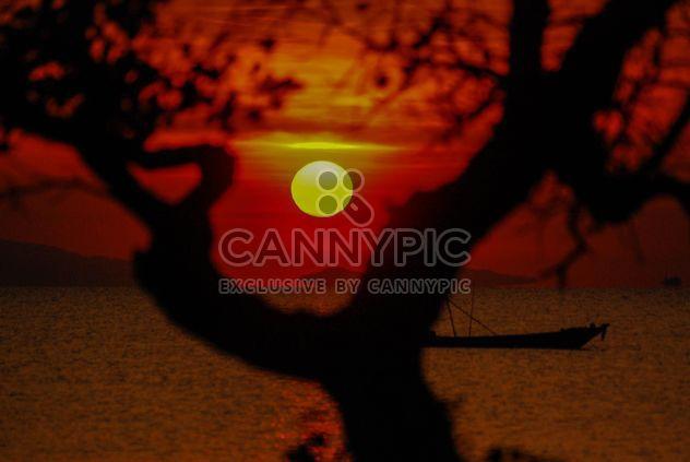 Dunkel orange Sonnenuntergang - Kostenloses image #344117