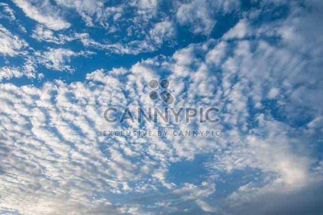 Cloudy blue sky - Free image #344137