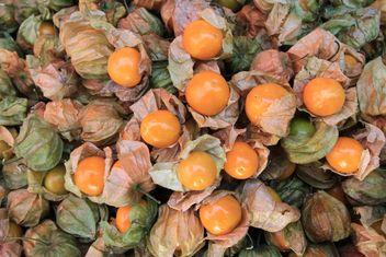 Background of cape gooseberry fruit - Free image #344557