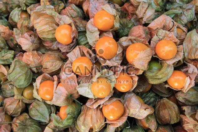 Background of cape gooseberry fruit - Kostenloses image #344557