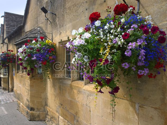 Flowers on facade of house in Chipping Campden - Free image #346217