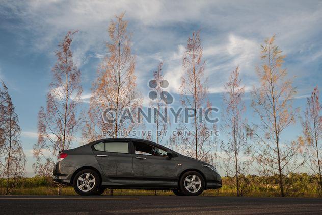 Carro cinzento estacionado na estrada - Free image #347197
