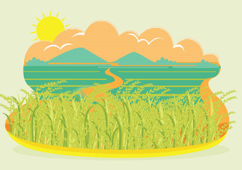 Rice Field Landscape Vector - бесплатный vector #347537
